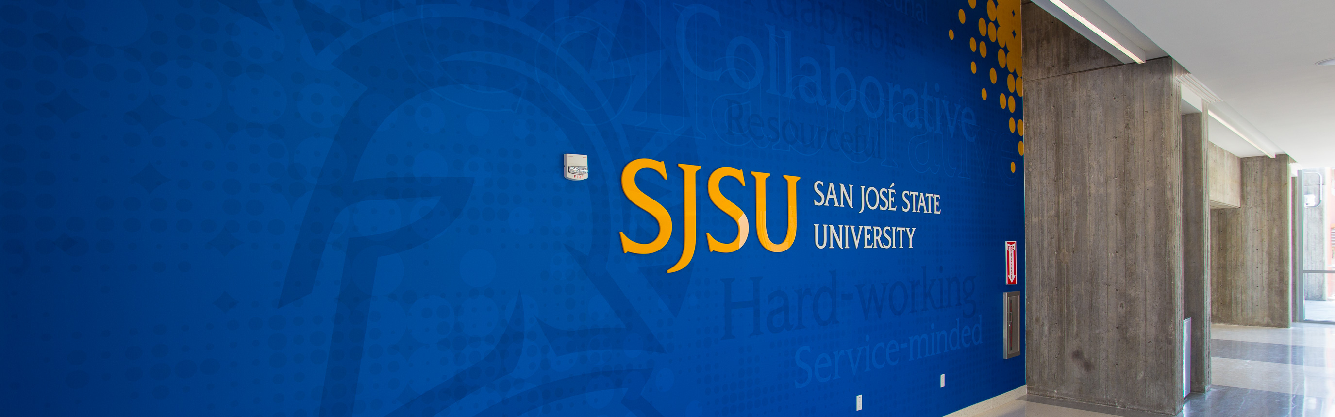 Brand Design & Environmental Graphics SJSU
